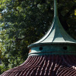 Roof of the rotunda - Stock Photo