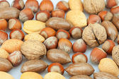 Background of various kinds of nuts — Foto de Stock