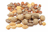 Background of various kinds of nuts — 图库照片