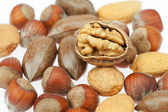 Background of various kinds of nuts — Stock Photo