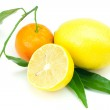 Lemon and mandarin with green leaves isolated on white — Stock Photo
