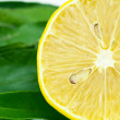 Stock Photo: Lemon with green leaf isolated on white