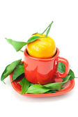 Mandarin with green leaves in a cup isolated on white — Stock Photo
