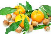 Mandarin with green leaves and nuts isolated on white — Stock Photo
