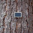 Background of tree bark and blackboard — Stockfoto