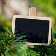 Blackboard attached to a tree branch in the forest — Stock Photo #6113660