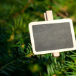 Blackboard attached to a tree branch in the forest — Stock Photo #6113661