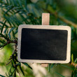 Blackboard attached to a tree branch in the forest — Stock Photo #6113667