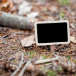 Blackboard attached to a tree branch in the forest — Stock Photo #6113692
