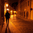 A beautiful night view of the street and the shadow of a man in — Stock Photo #6113695