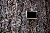 Blackboard bifogas en bakgrunden i barken — Stockfoto