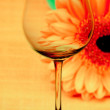 Conceptually illuminated glass of wine on the background of a fl — Stock Photo
