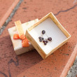 Small box with a  garnet earrings outdoor - Stock Photo