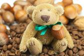 Urso de pelúcia com um arco, grãos de café e nozes — Foto Stock