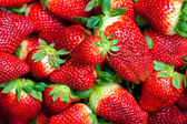 Background of red big juicy ripe strawberries — Stock Photo