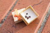 Small box with a garnet earrings outdoor — Stock Photo