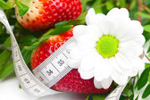 Background of red big juicy ripe strawberry and flower — Stock Photo