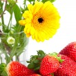 Background of red big juicy ripe strawberries and flower — Stock Photo