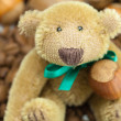 Teddy bear with a bow, coffee beans and nuts — Stock Photo #6142408
