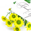 Stock Photo: Yellow daisy and a card signed thank you isolated on white