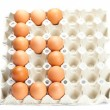 Eggs as the number six  isolated on white — Stock Photo