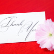 Sakura flower and a card signed thank you on a red background — Stock Photo