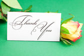 Rose and card signed thank you on green background — Stock Photo