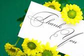 Daisy amarelo e cartão assinaram obrigado sobre fundo verde — Foto Stock
