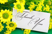 Yellow daisy and card signed thank you on green background — Foto Stock