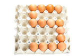 Eggs as the number five isolated on white — Stock Photo