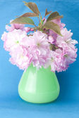Sakura flower in a vase and a card signed thank you on a blue ba — Stock Photo