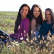 Three young beautiful woman sitting in a field on the sky backg — Stock Photo