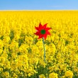 Pinwheel in a field of yellow rape against the blue sky — Stock Photo #6159782