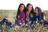 Tres jóvenes hermosa mujer sentada en un campo en el cielo backg — Foto de Stock