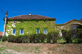 House entwined with ivy against the blue sky — Stock Photo