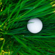 Background of spring green grass and golf ball — Stock Photo #6161356