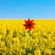 Pinwheel in a field of yellow rape against the blue sky — Stock Photo