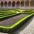Inner garden chartreuse monastery — Stock Photo #5549069