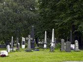 Historical Cemetery — Stock Photo