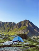 Tent in a lofoten camping site — Stock Photo