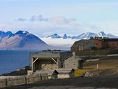 Artic rural housing landscape — Stok fotoğraf