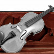 Black and white Violin in red brown case - Stock Photo