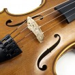 Stock Photo: Italiwooden Violin Chord details