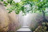 Mountain chinese zen path — Stock Photo