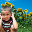 Stock Photo: Little plays hide-and-seek in sunflowers