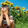 Little plays hide-and-seek in sunflowers — Stock Photo #6123177