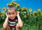 Little plays hide-and-seek in sunflowers — Stock Photo