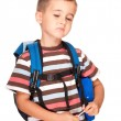 Little boy elementary student with backpack and sandwich box ups — Stock Photo #6160665
