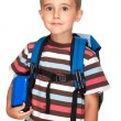 Little boy elementary student with backpack and sandwich box - Stock Photo