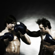 Two boxers — Stock Photo